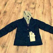 dolce&gabbana  Boys Jacket With Sweatshirt Inside 164 Navy  Photo