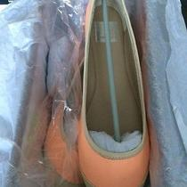 Dolce Vita Ballet Flats 7.5 Nib Photo