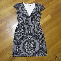 Dolce Vita Black Lace Overlay Shift Dress Sz S Photo