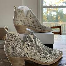 Dolce Vita Boot Size 7 Photo