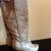 Dolce Vita Boots 7 Photo