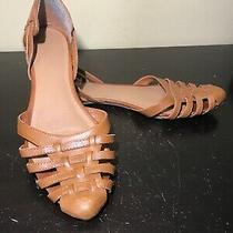 Dolce Vita Closed Toe Sandal Women Size 9.5 Photo