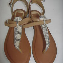 Dolce Vita Fabia Sandals Sz 10 Photo