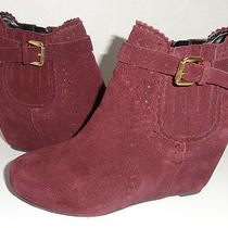 Dolce Vita Parkers Purple Wedge Ankle Boot Buckle Size 6.5 Photo