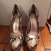 Dolce Vita Pumps Snakeskin Sz 7 Photo
