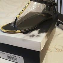 Dolce Vita Sandal Photo