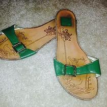 Dolce Vita Single Strap Sandal  - Green Photo