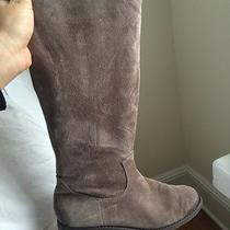 Dolce Vita Suede Boots Photo