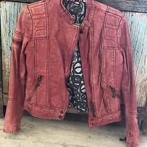 Doma Leather Jacket Photo