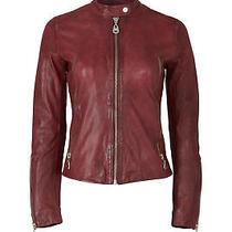 Doma Purple Women's Size Medium M Zip Trim  Motorcycle Leather Jacket 690- 599 Photo