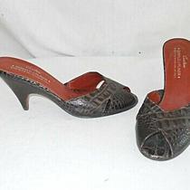 Donald J Pliner Couture Slides Cone Heel Mules Sandals Shoes Textured Peep 6m Photo