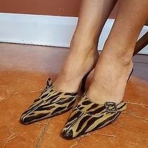 Donald J Pliner Sz 7.5 M Zebra Pony Hair Mules Pointed Womens Heels Euc Photo