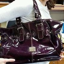 Dooney and Bourke Burgundy Wine Hobo Bag Photo