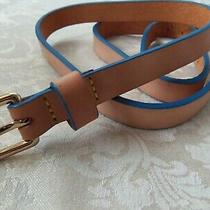 Dooney and Bourke D & B Brand New Tan Leather Belt With Blue Trim Strap Photo