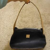 Dooney and Bourke Vintage Leather Handbag Repair Photo