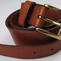 Dooney & Bourke Brown Leather Belt 32 S Photo