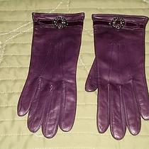 Dooney & Bourke Gloves Photo