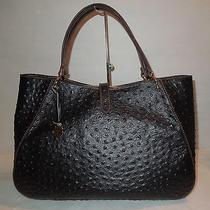 Dooney & Bourke Nwt Sahara Camilla Ostrich Embossed Bag Mb41s Black Very Rare Photo