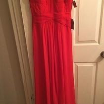 Dress  Photo