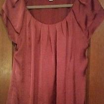 Dress Barn Pink/blush Pleated Flutter Sleeve Blouse Size Xl Photo