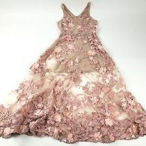 Dress the Population Sidney Lace Blush Dress Sz S Photo