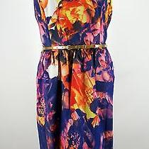 Dress Women's Ellen Tracy Floral Print Bright Colors Belted Tea Nwt Size 16 Photo