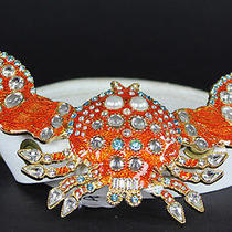 Dsquared Jeweled Orange Crab Buckle White Leather Belt M Photo