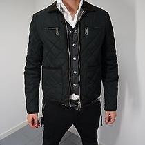 Dsquared Quilted Bomber Luxury D Caten's 48 Photo