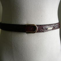 Dsquared Very Rare Thin Brown Ostrich Embossed Leather Gold Buckle Plaque Belt M Photo