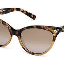 Dsquared2 Eyewear Women's Dq0097 Acetate Sunglasses    Photo