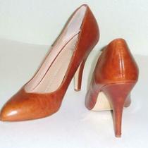 Dv Dolce Vita High Heels Pumps Brown/tan Dress Party Shoes Size 9m Photo