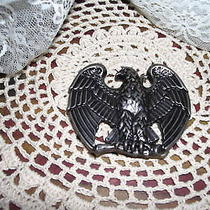 Eagle Belt Buckle Pewter  Photo