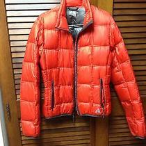 Eddie Bauer Coat Medium Photo
