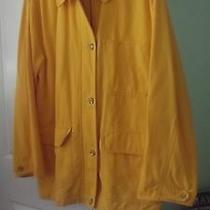 Eddie Bauer  Outdoor Outfitters Year Round Jacket Sz Womens L Photo