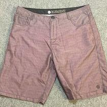 Element Plaid Shorts Men's 38w Brown Preowned Nice Casual Surf Skate Photo