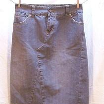 Element Women's Skirt Grey Denim Size 3 Photo
