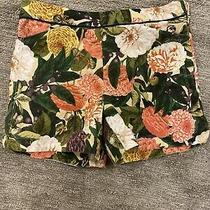 Elevenses Anthropologie Womens Size 2 Ranunculus Bloom Floral Printed Shorts Ec Photo
