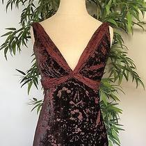 Elie Tahari Brown and Maroon Burn-Out Velvet Top. Size Xs Photo