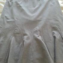Elie Tahari Skirt Photo