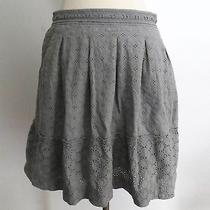 Eliot for Madewell Size 8 Gray Embroidered Eyelets Crochet Knee-Length Skirt Photo