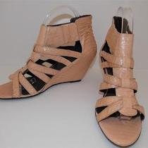 Elizabeth and James Patti Sz 10 Blush Snakeskin Wedge Strappy Sandals Shoes Photo