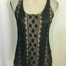 Ella Moss Anthropologie Beige Navy Blue Lace Scoop Neck Tank Top Small Photo
