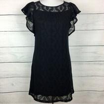 Ella Moss Black Crochet Lace Overlay Ruffle Sleeve Dress Size Small Photo