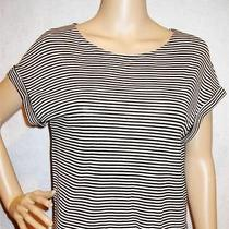 Ella Moss  Designer Stretch Striped Knit Trendy Top Shirt  Sz S  Mint Photo