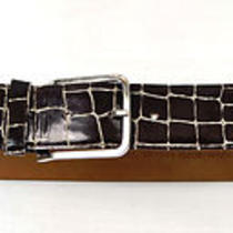Emporio Armani Brown Leather Belt 52 Italy 301089 Photo