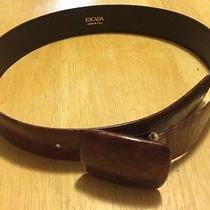 Escada Brown Belt  Photo