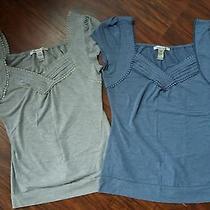 Euc 2 Juniors Large American Rag Shirts Macy's Brand Name Photo