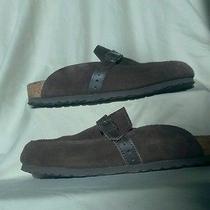 Euc Birkenstock Suede Dark Brown Clog W Leather Buckle Front Detail Sz 38 Photo