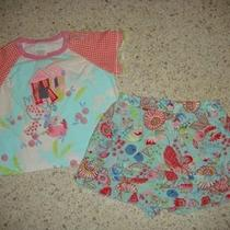 Euc Cakewalk Butterfly Tea Party Tee & Aqua Red Floral Skort Set 12 Months 12m Photo