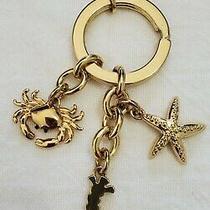 Euc Coach Multi Mix Key Fob/ring/chain Charm Gold Paveheart Crown Hangtag Photo